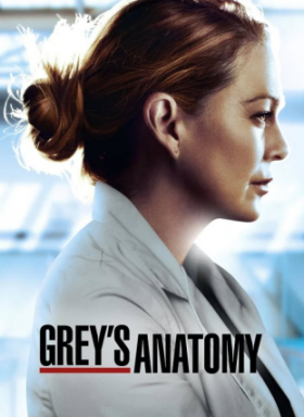 مسلسل Greys Anatomy الموسم 17
