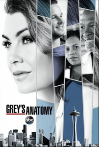 مسلسل Greys Anatomy الموسم 14